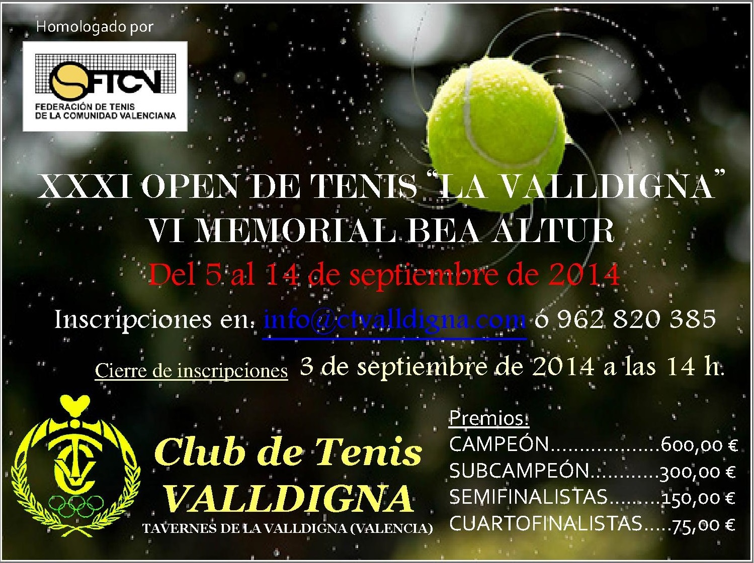 Cartel OPEN 2014